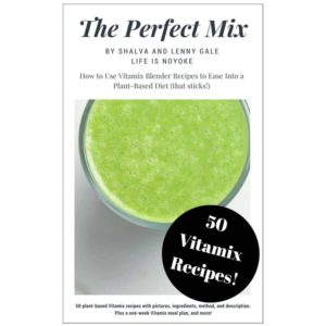 The Perfect Mix eCookbook with 50 Vitamix Recipes by Shalva and Lenny Gale Life is NOYOKE.