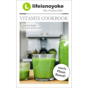 The Perfect Mix v3.0 Lifeisnoyoyokes Vitamix Cookbook cover SQUARE SM